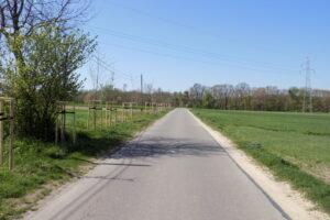 160 nowych drzew na terenie Olesna